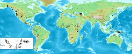 Elevation's influence on Language